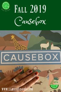 Fall 2019 Causebox