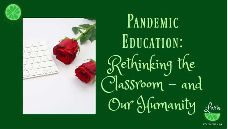 Pandemic Education:  Rethinking the Classroom – and Our Humanity