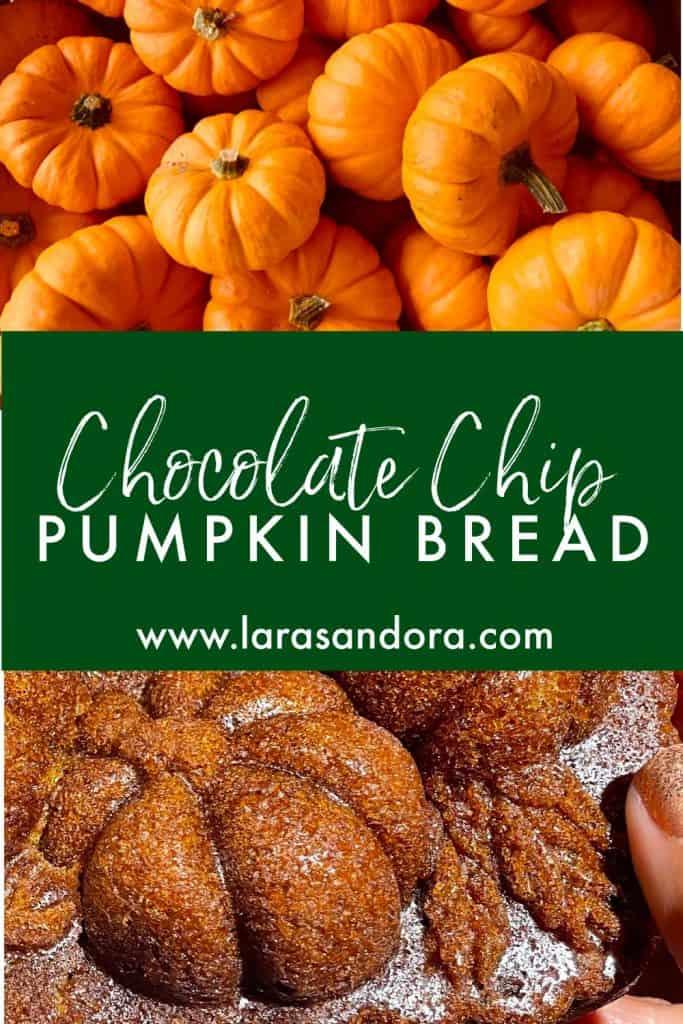 Best Chocolate Chip Pumpkin Bread - or Muffins